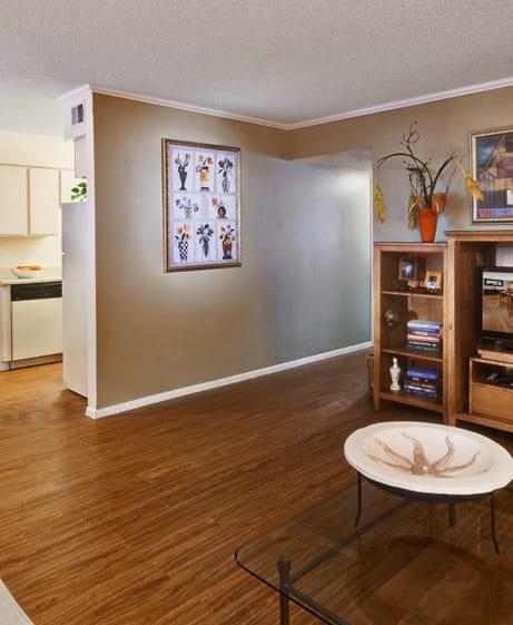 Luxurious living room, Juniper Springs Apartments, TX, 78731