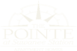 The Pointe at Suwanee Station