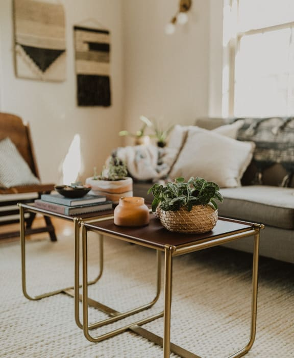 Two end tables in front of a couch with books and plant