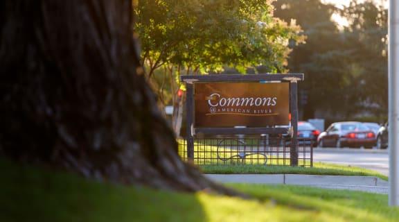 Commons' Landmarker - American River Drive