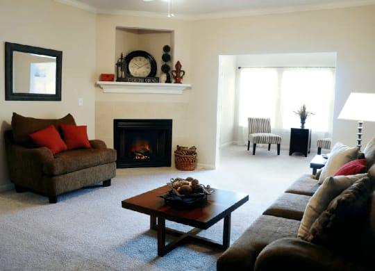 phase 1 living room at Village on the Lake Apartments in Spring Lake NC