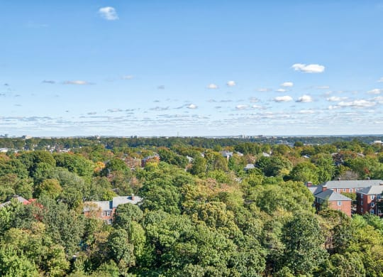 Panoramic View Of City at Halstead Tower by Windsor, 4380 King Street, Alexandria