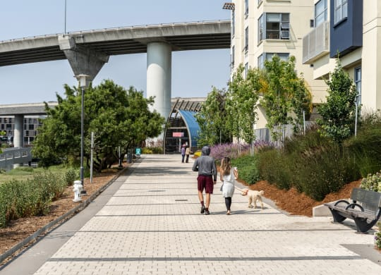 Mission Creek Waterfront Mission Bay by Windsor, San Francisco, 94158