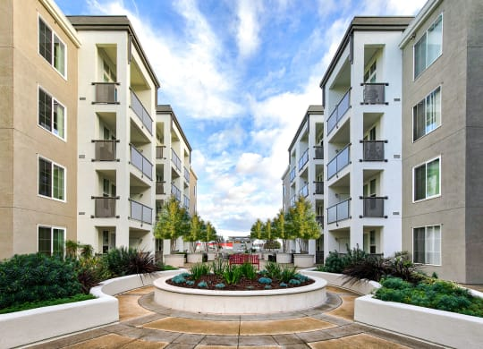 Ideal Bay Area location at Allegro at Jack London Square