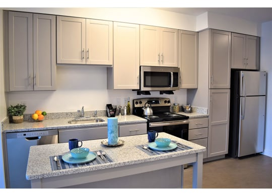Fully Equipped Kitchen With Modern Appliances at Apex Apartments, Arlington, Virginia