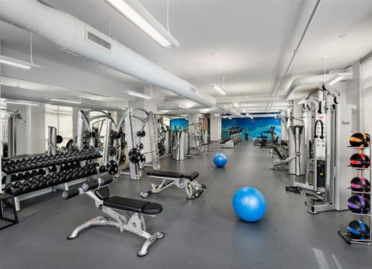 Fitness Center With Modern Equipment at Berkshire Lauderdale by the Sea, Ft. Lauderdale