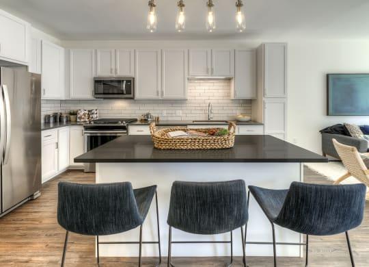Luxury Two Bedroom Apartments, Des Plaines IL, 60016-Ellison Apartments