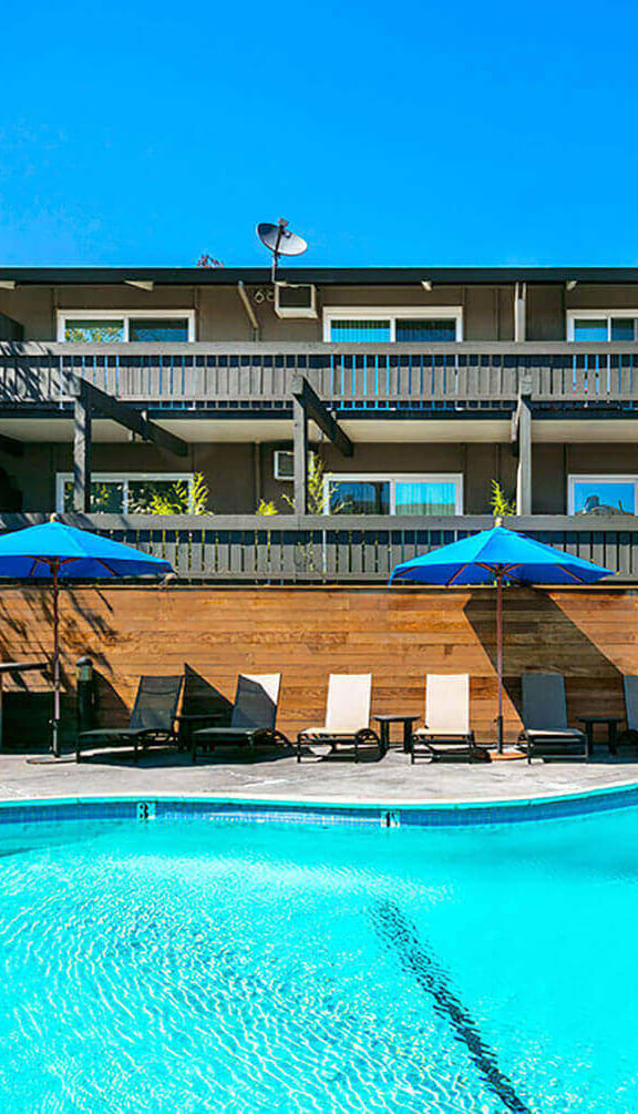 Swimming Pool With Relaxing Sundecks at 1038 on Second, Lafayette, 94549