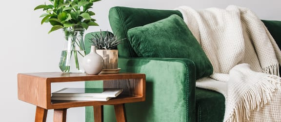 Green sofa with side table and plant