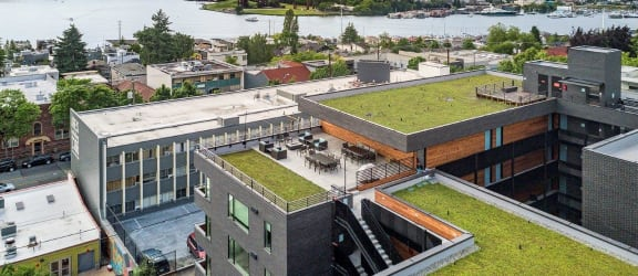 Green Roof Views at Shelton Eastlake apartments in Seattle, Washington