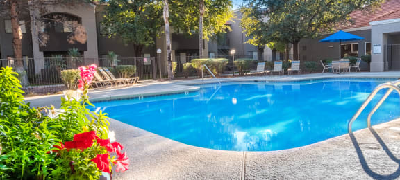 Estancia pool view with nice plants and lounging area