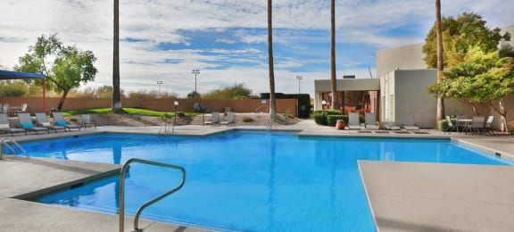 Springhill pool view with tall trees around and lounging area near