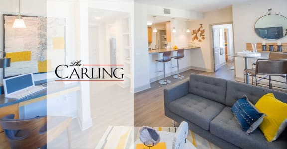 The Carling Apartments   Jacksonville, FL