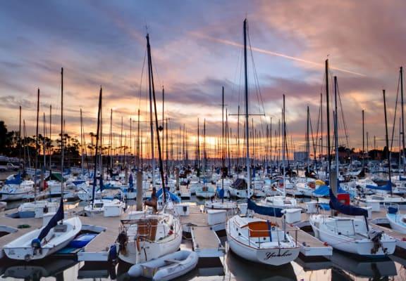 Azure the Residences image of boat docks