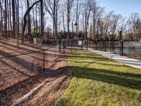 Dog Park at LaVie Southpark, North Carolina, 28209