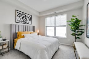 Bedroom Featuring Plush Carpet & Double Windows