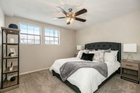 Bedroom with Plush Carpet and Double Windows