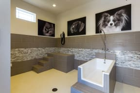 Pet Wash and drying station