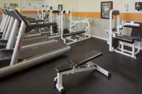 Fitness center    Great Hills