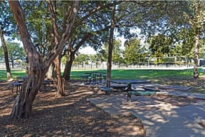 Shaded picnic area | Monterey Ranch