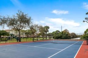 Tennis court | Floresta