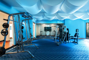 Fitness center  | District at Rosemary