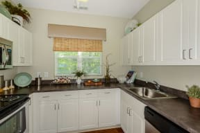 Kitchens with all electric appliances    Endicott Green