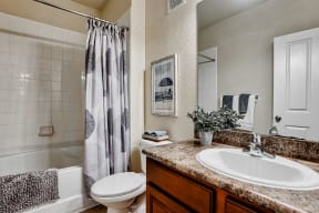 Bathroom  | Estates at Heathbrook