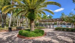 Poolside courtyard | Floresta