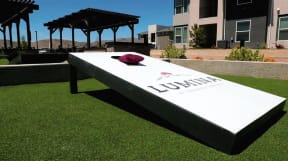 cornhole boards on game lawn