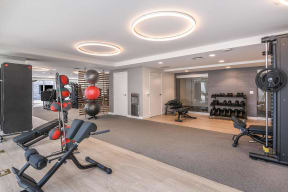 State of the art fitness center  Paramount on Lake Eola
