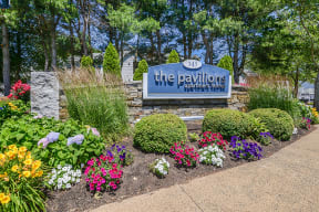Welcome to The Pavilions!
