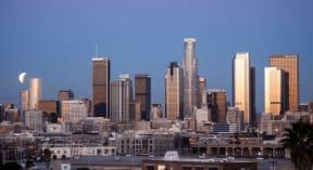 DTLA Skyline View