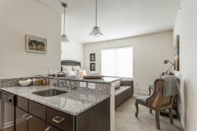 Granite Counter Tops In Kitchen at 310 @ Nulu Apartments, Louisville, 40202