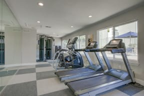 Cardio Machines In Gym