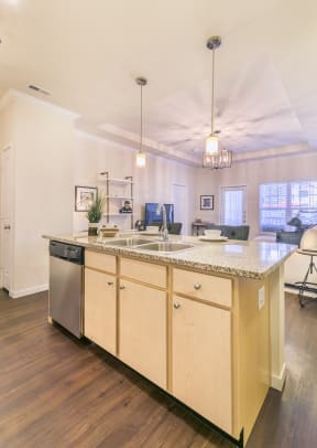 Open Floor Plan with Modern Layout at Aventura at Forest Park, St. Louis, MO