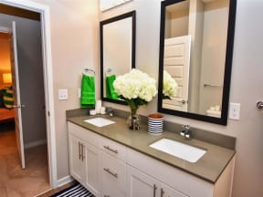 Custom Look Pointe at Lake CrabTree Bathroom in Morrisville Apartments for Rent