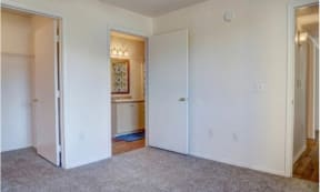 Large Walk in Closet at The Colony Apartments, AZ, 85122