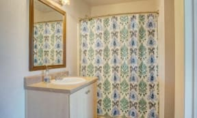 Stand up shower at The Colony Apartments, Casa Grande, AZ