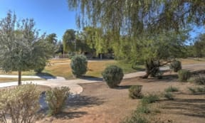 Beautifully Landscaped Grounds at The Colony Apartments, Casa Grande, Arizona