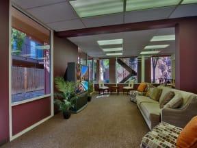Lush Wall-to-Wall Carpeting at Fountain Plaza Apartments, 2345 N. Craycroft, Tucson, AZ