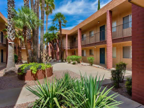 Lush landscaping at Fountain Plaza Apartments, 2345 N. Craycroft, Tucson, AZ