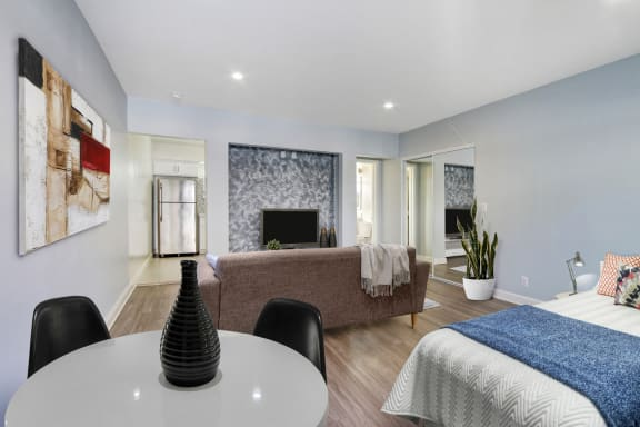 Studio apartment with accent wall