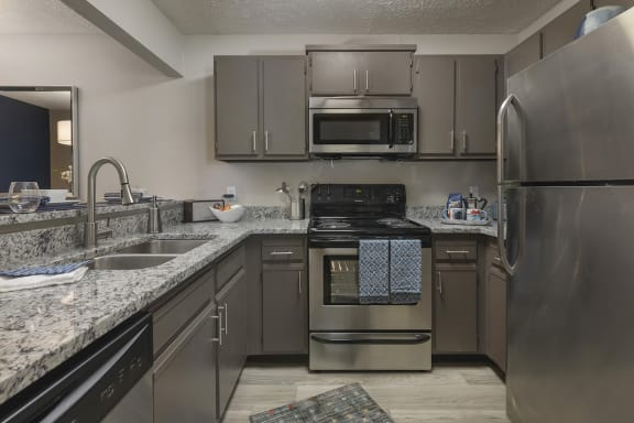 spacious kitchen with dishwasher, stainless steel sink and appliances, at The Retreat at Lakeland Apartments, Lakeland, 33809