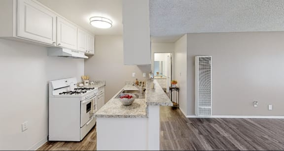 Tierra Del Sol one bedroom apartment kitchen