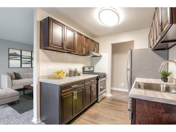 101 North Ripley Renovated Kitchen