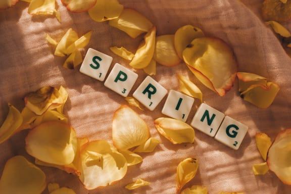 Spring at Rancho Franciscan Senior Apartments, Santa Barbara, CA, 93105