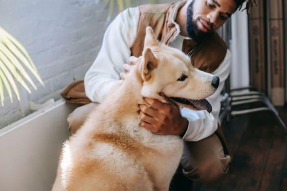man_and_dog at Siena Apartments, Santa Maria