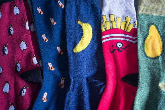 Socks at Encina Meadows, Goleta