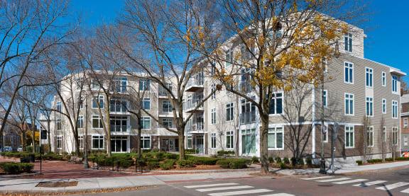 Beautiful Surroundings at 7 Cameron, Cambridge, 02140